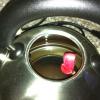 Ants in my kettle